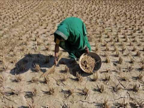 Revolutiile foamei si dezastrele ne duc in pragul unei noi crize