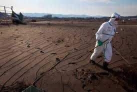 Scurgerile radioactive continua si in acest moment la Fukushima, iar Guvernul cere uciderea vitelor ramase in zona delimitata