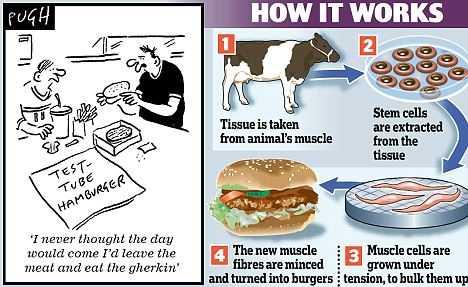 CE OTRAVURI NI SE MAI SERVESC: s-a inventat carnea artificiala, se asteapta burgerul sintetic, iar dupa masa ne spalam pe dinti cu triclosanul de la Colgate
