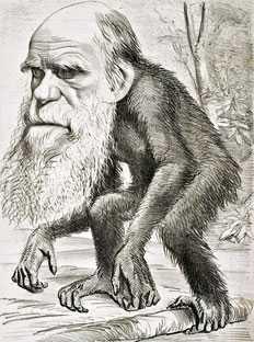 ZOOFILIA, ultima SPECIE a DARWINISMULUI, vrea LEGALIZARE