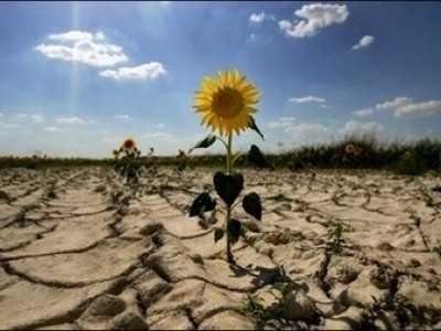 Fermierii anunta DEZASTRU IN AGRICULTURA si denunta DISCRIMINAREA COMISIEI EUROPENE fata de agricultorii TARILOR RASARITENE