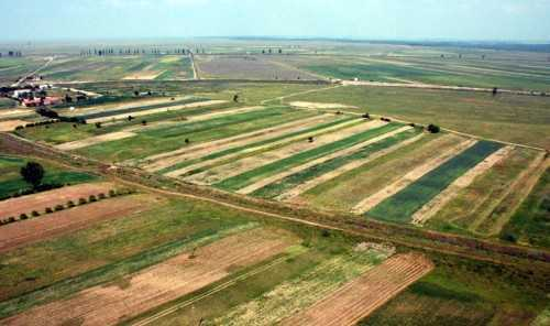 Liga Producatorilor Agricoli: VOM AJUNGE SA CALCAM PE PAMANT STRAIN IN PROPRIA TARA