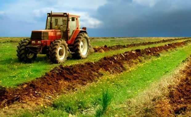 Romania, EL DORADO al AGRICULTORILOR… europeni