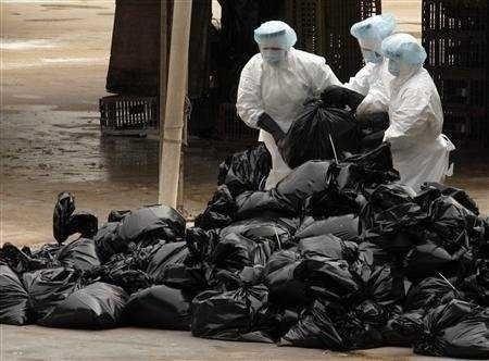 GRIPA AVIARA: Mexic decreteaza STARE DE URGENTA