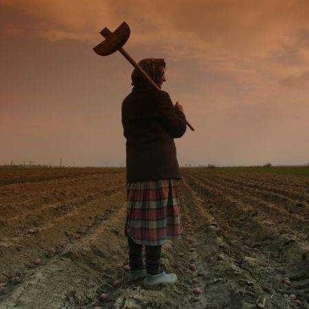 <b>Mihai Gotiu despre exterminarea micilor agricultori</b>: de la COLECTIVIZAREA COMUNISTA la COMASAREA si INDUSTRIALIZAREA CAPITALISTA