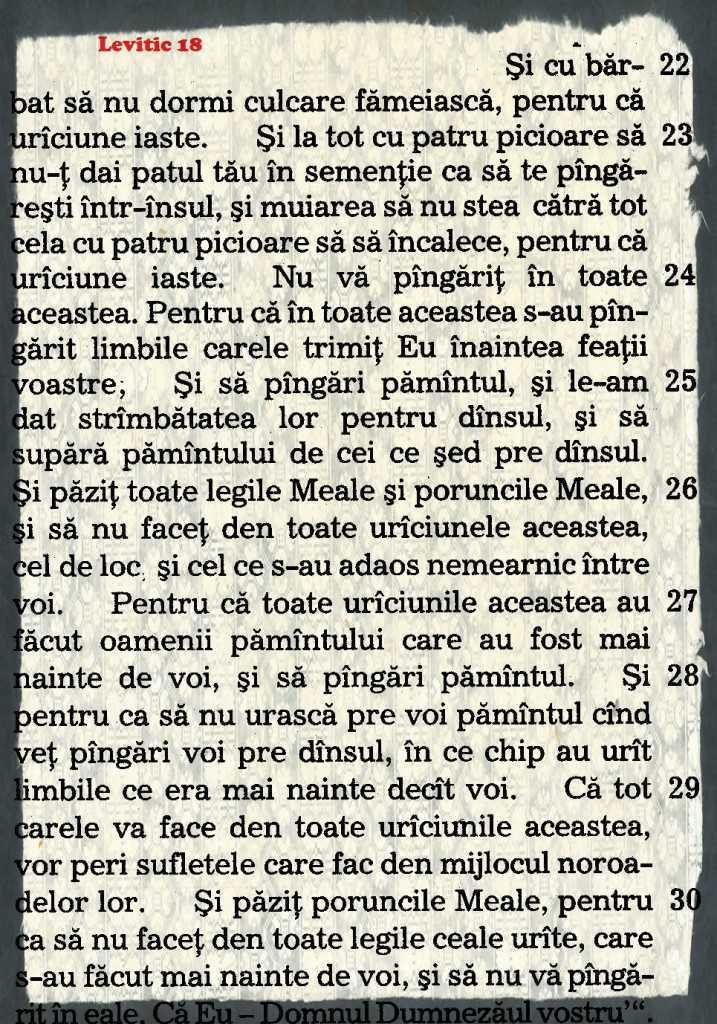 levitic-biblia-1688