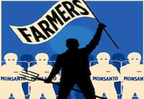 Monsanto-takes-home-23mln-from-small-farmers-seeks-to-maintain-seed-oligarchy