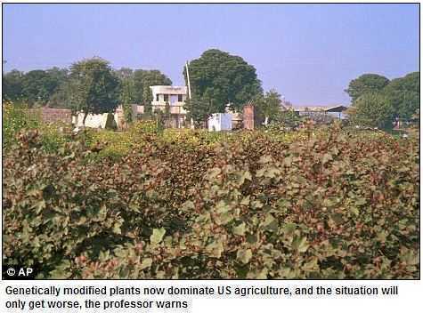 BIOTEHNOLOGIE: organismele modificate genetic si distrugerea economiei locale