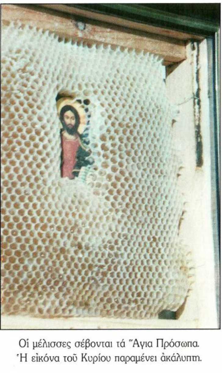 """Minunea stupului de albine care """"IMBRACA"""" ICOANE cu ceara"""