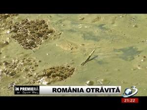 Crangurile - Db. - Romania otravita22