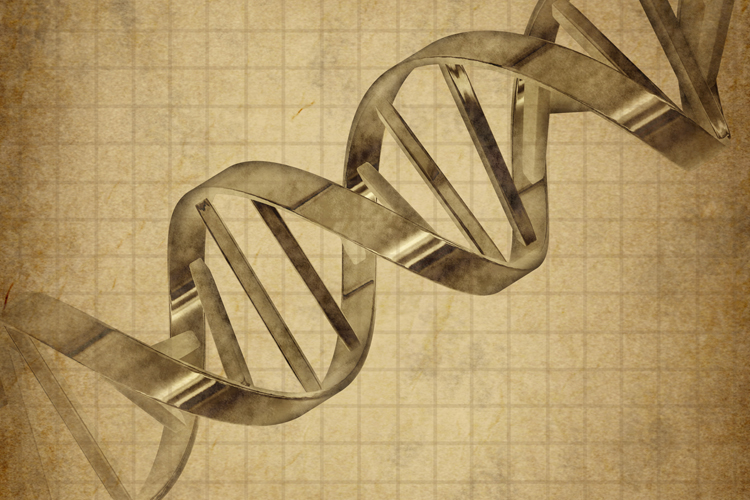 "Brave new world in action: PRIMA COMPANIE CE VA PUTEA ""PROGRAMA"" GENETIC COPIII"