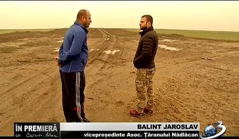 Balint Jaroslav