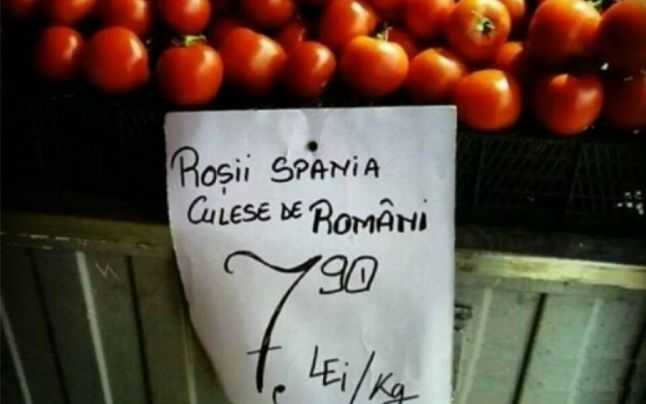 "<i>""Rosii Spania culese de romani""</i> sau o ALTFEL de amenintare la SIGURANTA NATIONALA: <b>Romania devastata de saracie</b>"