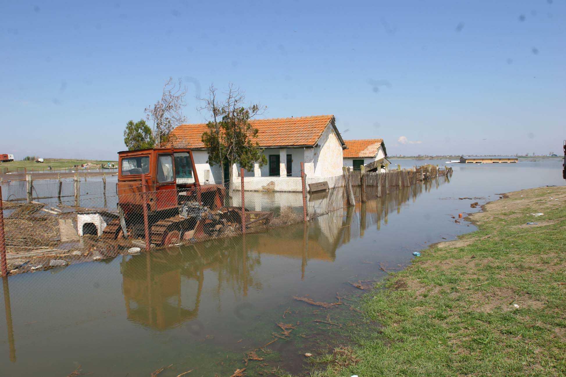RECOLTE COMPROMISE.  Inundatiile au distrus o mare parte din culturile de cereale si legume