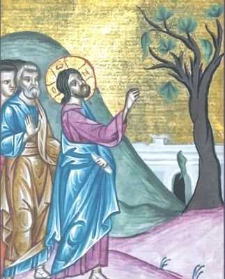 Christ-curses-the-Fig-Tree