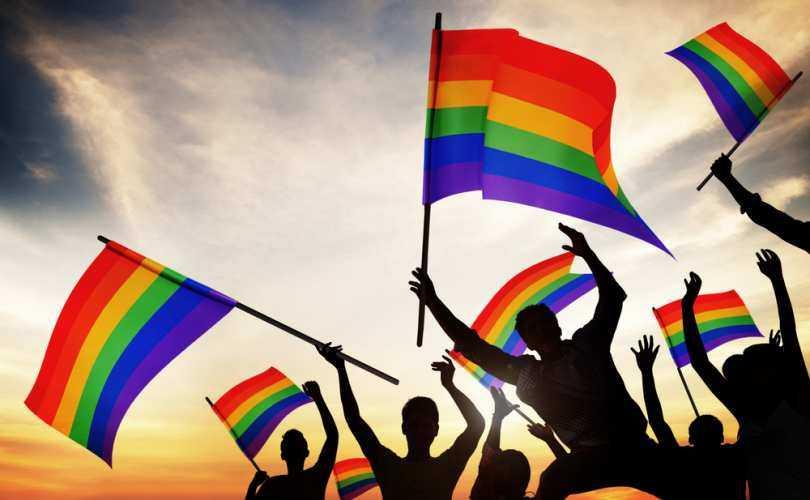 """CRESTINII DIN AMERICA INCEARCA SA OPUNA REZISTENTA MAFIEI HOMOSEXUALISTE. Editorial in NEW YORK TIMES: <i>bisericile crestine trebuie convinse sa elimine homosexualitatea de pe lista pacatelor</i>/ Cazul-scoala al scandalului declansat de afirmatiile """"homofobe"""" ale MIHAELEI RADULESCU/ Franta numeste un AMBASADOR HOMOSEXUAL la VATICAN"""