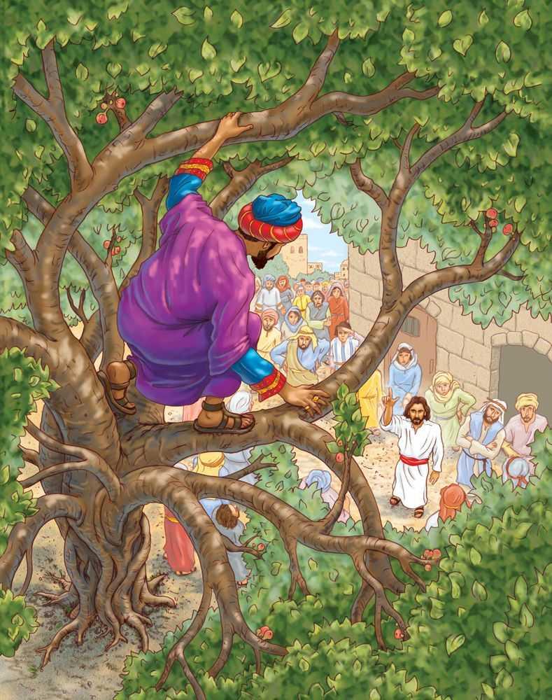 Zacchaeus-2