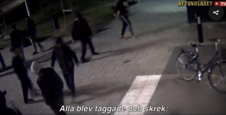 infractori Suedia - captura TV