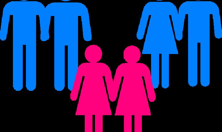 Aviz pozitiv cu UNANIMITATE de voturi pentru parteneriatul civil homosexual dat de Comisia pentru muncă și protecție socială a Camerei Deputaților. Ce s-a întâmplat în numai doi ani?