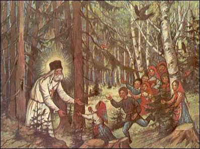 seraphim_woods