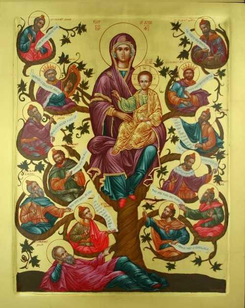PREDICI SI TALCUIRI LA DUMINICA DINAINTEA NASTERII DOMNULUI. Genealogia Mantuitorului. Sensul pomenirii stramosilor lui Iisus. <b>Cum ne pregatim pentru Craciun?</b>