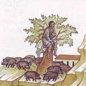 la porci