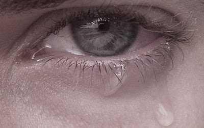 lacrimi blog