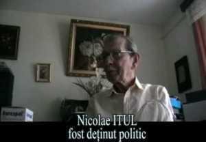 nicolae itul