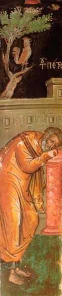 Plans Petru mic crop coperta teologia lacrimilor