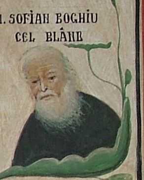 Grigore Popescu, Nurnberg - Sofian cel bland