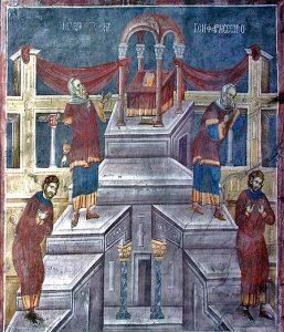 vamesul-si-fariseul-gracanita-s14