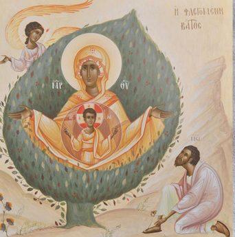 icoana de Mihai Coman